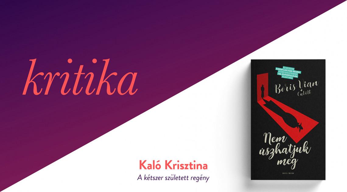 A kétszer született regény (Boris Vian + OuLiPo: Nem úszhatjuk meg)