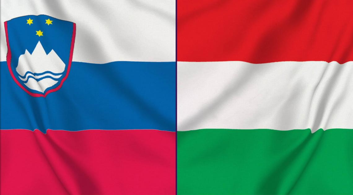 A gyenge kapcsolatok jelentősége – A szlovén–magyar irodalmi kapcsolatok a kelet-közép-európai irodalmak hálójában