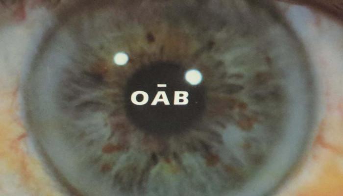 Robert Zend: Oāb (részletek)